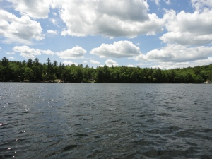 Swanzey Lake Views