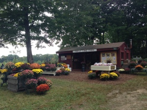 Maple Lane Farm Stand