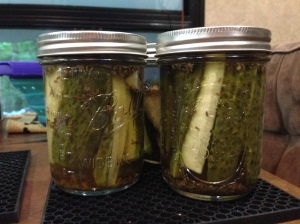 I canned some pickles