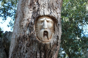 Carvings in trees are throughout St. Simons island but hard to find