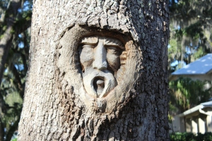 Sailor's spirit carving in tree