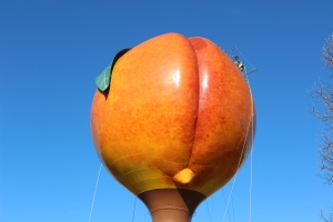 Giant peach butt with worker