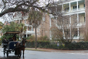 Carriage Tour on the main street