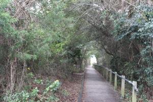 Walkway to Sullivan's Island beach