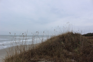 The ocean!!