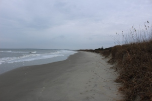 Great beach at Sullivan's Island