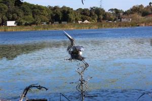 Carane made of metal in the lake