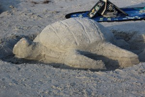 Cool turtle sand sculpture