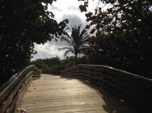Tiny free park on nice beachfront property
