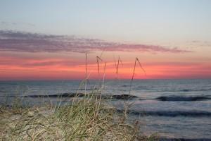 Sunrise on the beach with the sea grass I love