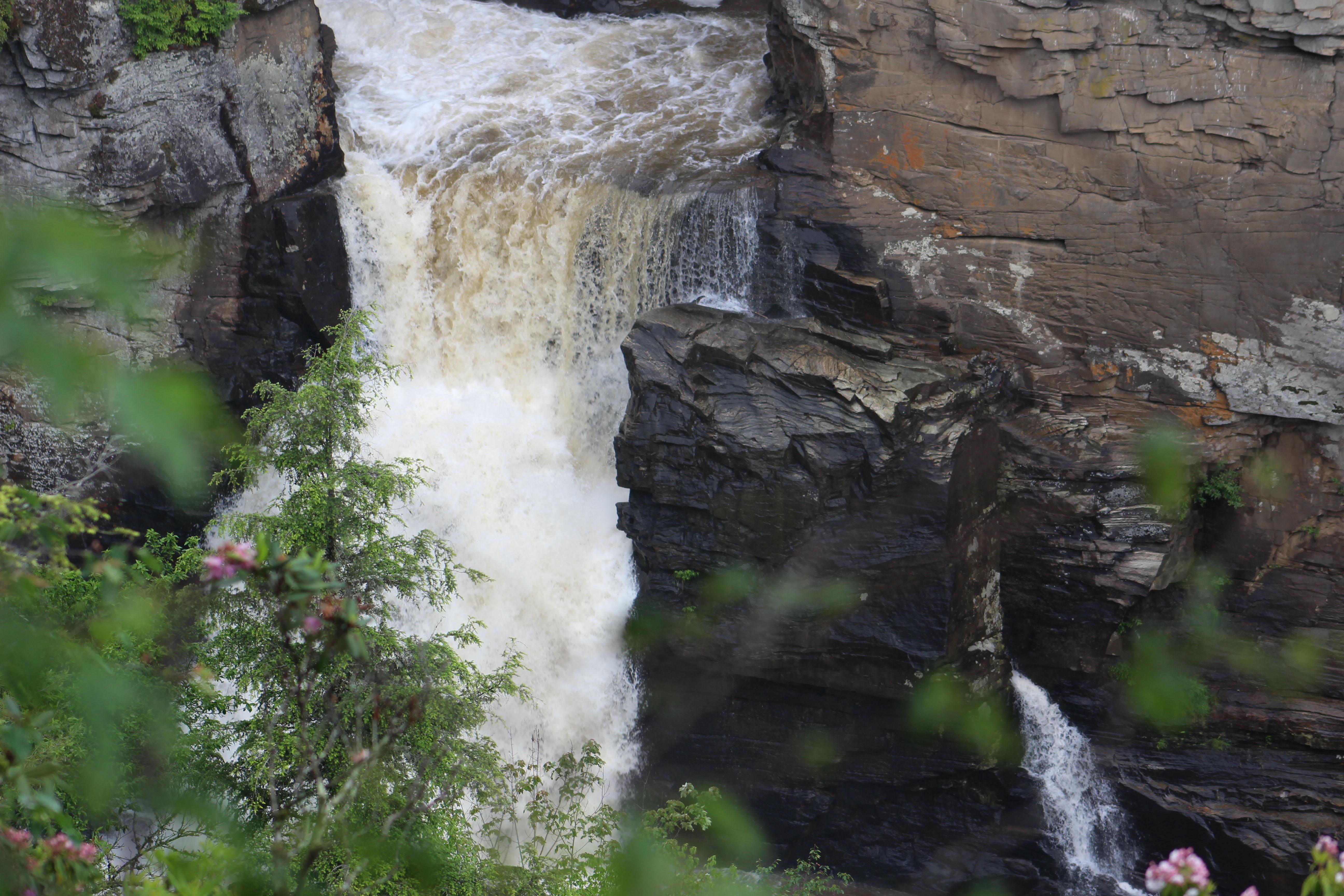 waterfall Rick hairy