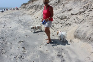 Sue on the beach