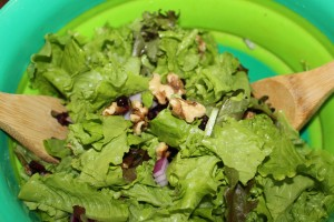 Walnut and Cranberry Salad