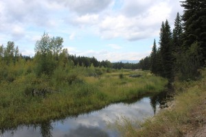 Lots of creeks and meadows