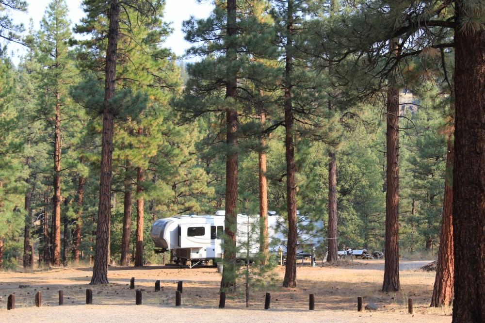 Site at Hobo Day Camp Susanville, CA
