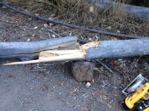 Lee split the wood with a rock and an axe