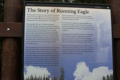 The Story of running eagle