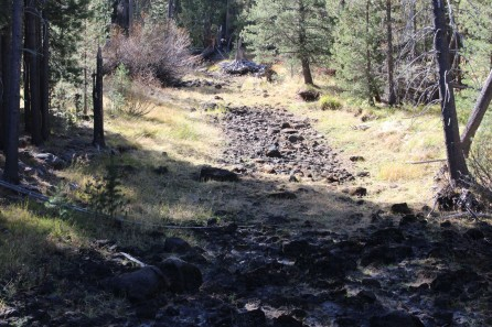 Dry creek beds, they have water in the spring