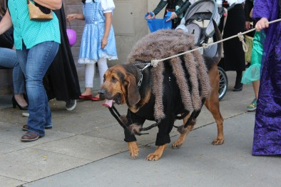 This bloodhound was so creeepy. Amazing costume though