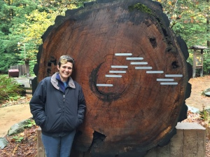 This tree was at the visitors center with tags on what was happening at the different rings