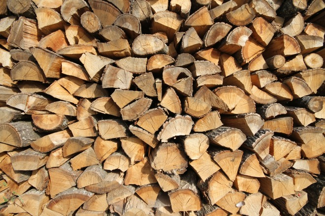 backyard wood shutterstock