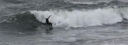 Y SURFER 2