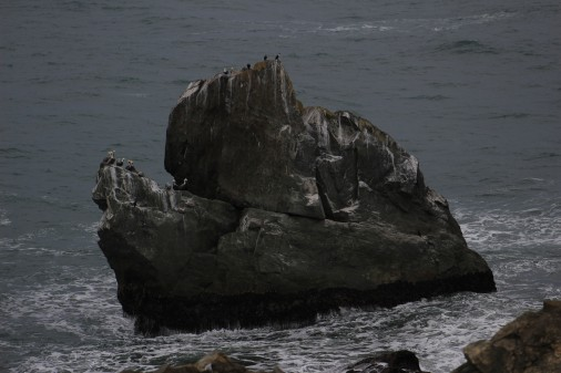 I loved this rock with tons of Pelicans. Wish I would have had a longer lense.