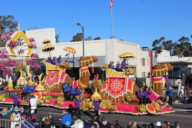 I thought the camel float was really fun and it won the Isabella Coleman award which is best presentation of color. Many years this is my favorite but not this year