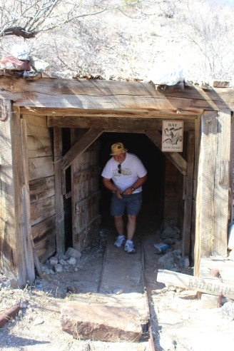 Bill was the only one brave enough to go into the Bat cave