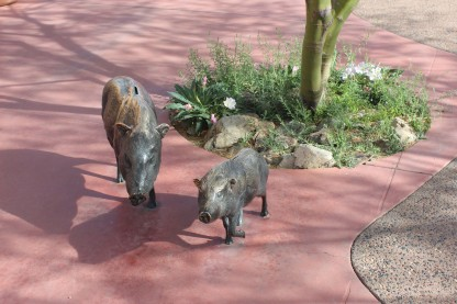 I loved these Javelina sculptures which were also piggy banks for kids to make donations in