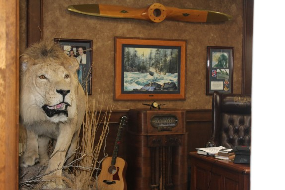 The weirdest thing is what I saw as I was walking by the owners office. That is the best stuffed lion I have ever seen. Would have loved to ask about it, but they were all pretty busy