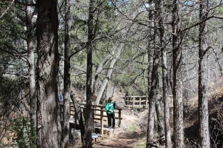 Cori making her way on the trail