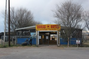 They even had a horse hotel with a horse in it..