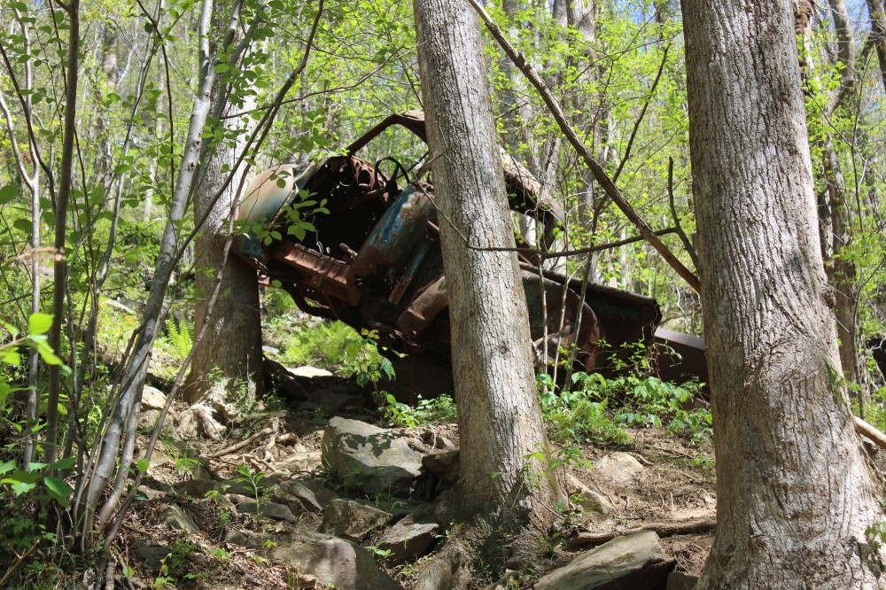 Another advantage of taking this trail is you get to see this old bootlegger truck. See how the tree is growing around it. Look up on your left as you are approaching the falls to find it