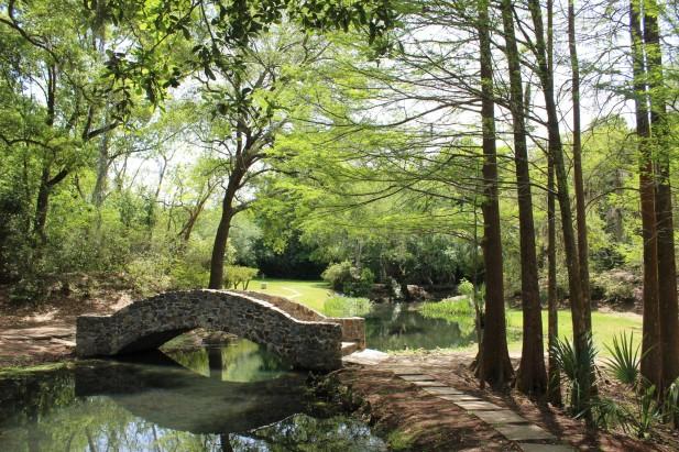 Beautiful pond and bridge