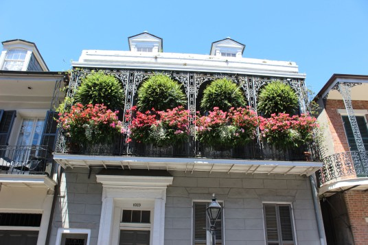 Some of the hanging gardens were beautiful