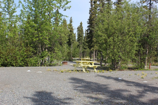 Nice campsites with some tree separation. So glad it's not a parking lot.