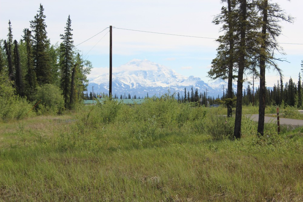 Walk out to the road, look left and here's what you see. Wow!! Mt. Drum in all it's glory