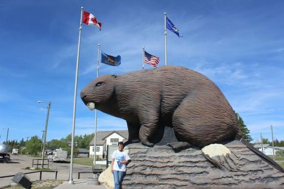 Giant Beaver!!
