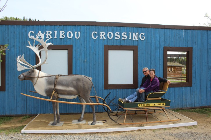Got our pic in a Caribou sleigh and a very nice staff member took several for us