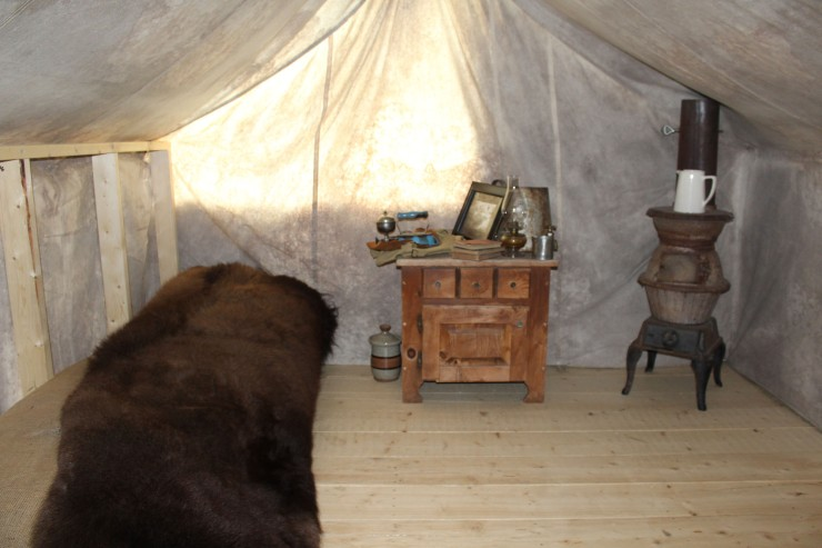 Real bear skin rug in the tent