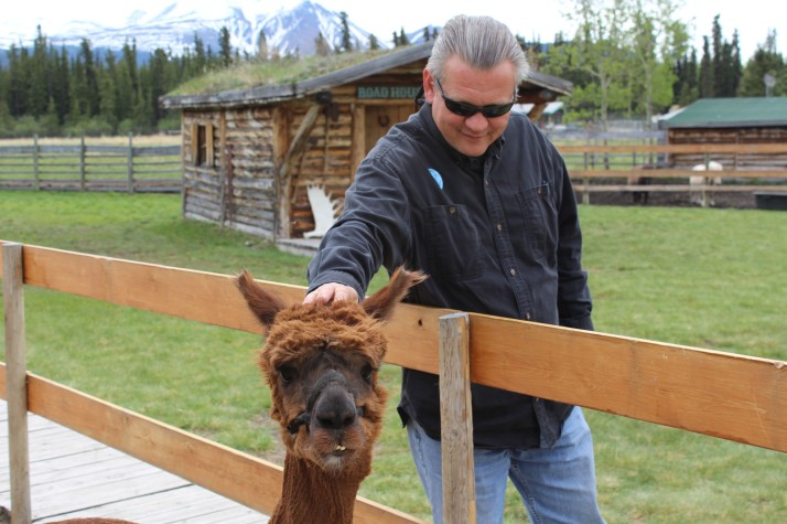 He did enjoy the alpaca though
