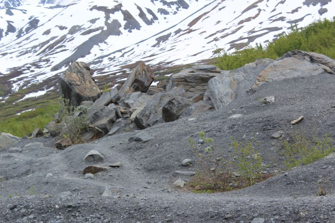 These giant boulders were pushed by the glacier and then left when it receded. They were huge