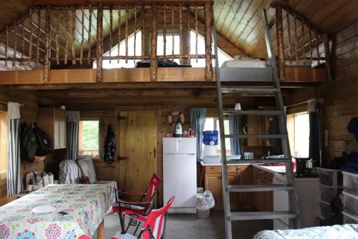 Propane fridge and wood stove