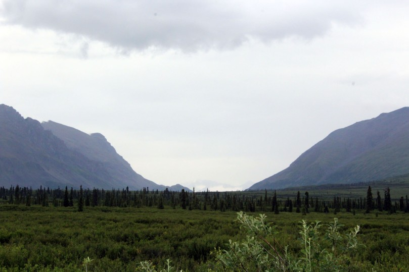 MP 22.5 Landmark Gap which was formed in an Ice Age more than 10,000 years ago. This gap was a favorite Inidna hunting area and the Nelchina caribou herd still migrates through this area.