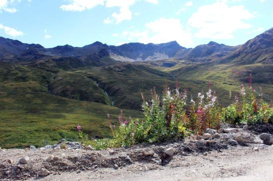 Hatcher Pass