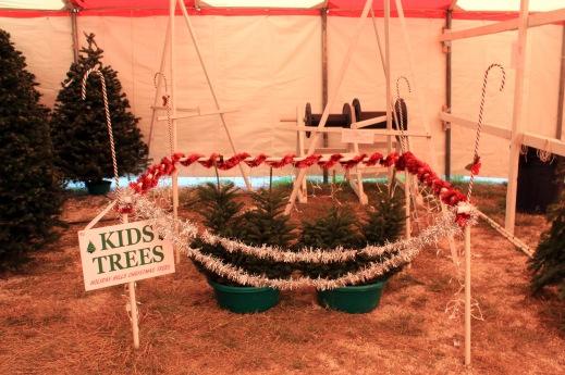 Kids tree area Lee setup. These trees went fast