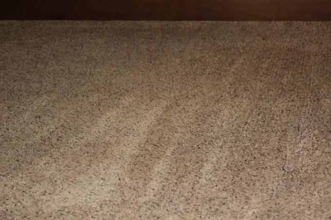Nice clean carpet