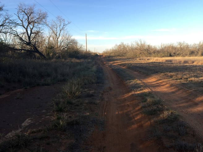 Road we drove down on the ranch