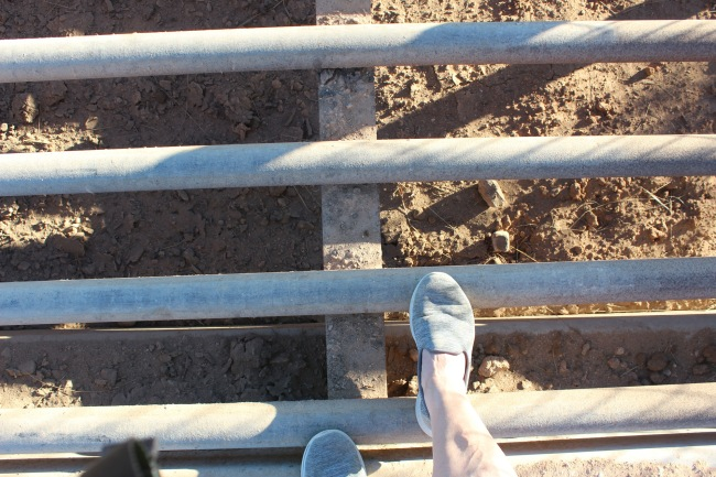 Around that are these cattle guards and as you can see my foor can easily fall in so I try to stay on the walkway